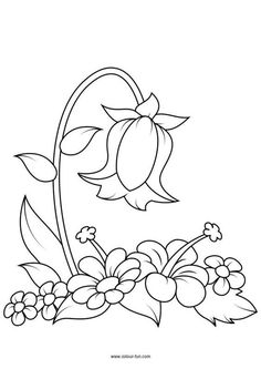 Flower Coloring Pages Printable - #Coloring #flower #Pages #printable