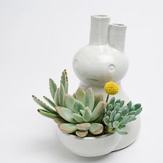 Succulent love planter.  So cute