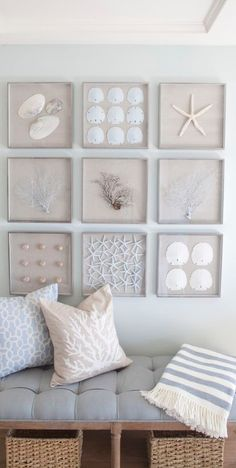 Beachy vignette featuring sanddollars, seashells and sea fans! The identical frame designs and size makes for an orderly grouping of organic items. A lovely way to bring it together in one cohesive space!    --------------------- #gallery #wall #sea #seachells #sanddollas #beach #travel
