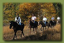 #GriffithPark #Horseback #Riding,Description: Riders have many specially marked trails, fire, and patrol roads within the park boundaries. All trails are closed at sunset. Riders may walk, trot, or canter horses, but must remain on marked trails at all times. Stables located near the parks northwestern and southwestern boundaries are privately owned.