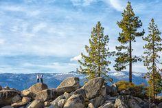 Shaunte Dittmar Photography | Sand Harbor Engagement Photos Lake Tahoe
