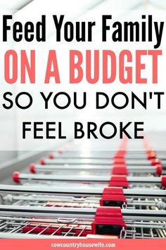 How to Feed Your Family on a Budget (so You Don't Feel Poor or Broke). I love this! She shares her best tips for feeding a family of 5 on a tight budget so that they don't feel poor. I need this for my family! Rice and beans is getting really old! Feeding a family on a tight budget. Save money on groceries. Tricks to making the most of a small grocery budget. Feeding a family on a budget. Feeding a big family on a budget. Tips and tricks for freezer cooking. Grocery shopping on a budget.