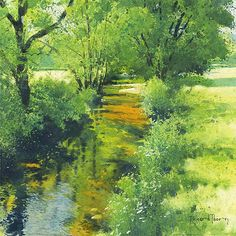 Richard Thorn - Meadow River