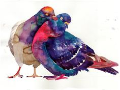 Technicolor watercolor birds by Maja Wronska  | Colossal
