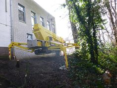 Baumpflege mit der Hubarbeitsbühne