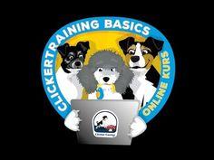 Online Kurs - Clickertraining Basics