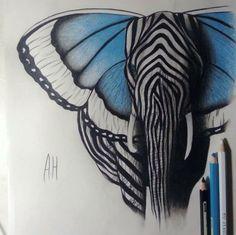 Farfalla elefante