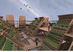 Projeto-de-aquaponia-incluindo-hortaliças-e-peixes-Crédito-Internet.j