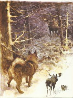 Elkhound Elk Moose by Rien Poortvliet 1983 colour dog hound print