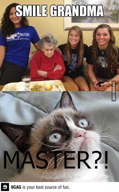 Grumpy cat is my favorite thing ever. Grumpy grandma's pretty cool too.