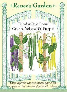 Beans - Pole Tricolor by Renee's Garden. $2.79. Backed by manufacturer's warranty.. Exclusive - A blend of three colors of pole beans that makes good use of limited space. Extended heavy harvests of delicious gold, green and purple pods.