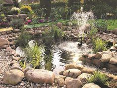 Un bassin à jet d'eau pour un jardin de rocaille
