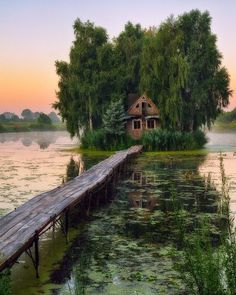 Abandoned house in the swamp Abandoned Houses, Abandoned Places, Nature Aesthetic, Cabins In The Woods, Beautiful Landscapes, Places To Go, Nature Photography, Beautiful Places, Amazing Places