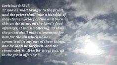 God / Jesus / Holy Spirit / Bible