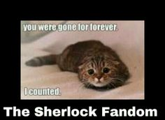This is where I wish I could send this picture to Steven Moffat and be like thats what my life was like waiting for season 3!!