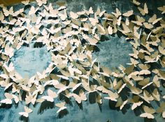 butterfly paper cutouts, escort cards:  close up of a butterfly wall display in anthropologie