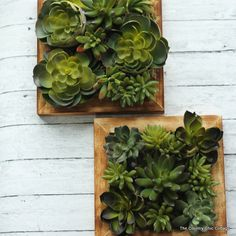 Use the great variety of faux succulent plants that are available to create this one of a kind wall art. You can make this in just minutes for your home.