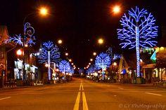 #Gatlinburg #WinterMagic #Trolley Ride Of Lights is breathtaking! http://www.diamondrentals.com/