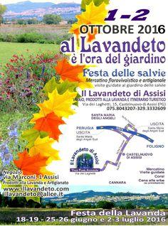 AL LAVANDETO E' L' ORA DEL GIARDINO mostra di florovivaismo  @ IL LAVANDETO DI ASSISI - 1-Ottobre https://www.evensi.com/al-lavandeto-e-l-ora-del-giardino-mostra-di-florovivaismo/162156585