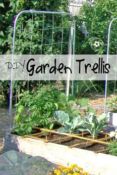 Expand your garden upward with a DIY Garden Trellis! {Picture-filled tutorial from OneCreativeMommy.com}: