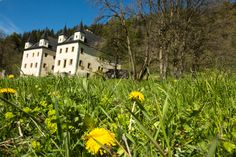 Frühling auf Schloss Höch - wunderbarer Spaziergang in der Natur #schloss #natur #spaziergang Salzburg, Mansions, House Styles, Tourism, Hiking, Friends, Landscape, Vacation, Summer