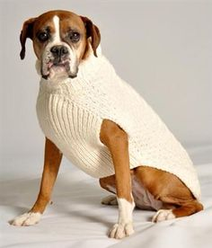 Our Official Handmade Cable Knit Wool Dog Sweater - Natural is the perfect product for almost any pet at an exceptional value! Weekly promos with same day shipping! Large Dog Sweaters, Cable Knit Sweaters, Big Dogs, Large Dogs, Chilly Dogs, Crochet Dog Sweater, Boxer Dogs, Boxers, Dog Coats