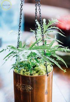 diy hanging planter, container gardening, crafts, gardening, how to
