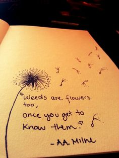 Weeds are flowers too, once you get to know them. #dandelion #drawing #sharpie -maryvillela on Instagram
