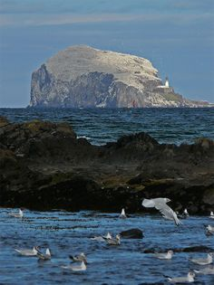 10,000 for every year on Trekearth? - North Berwick, East Lothian