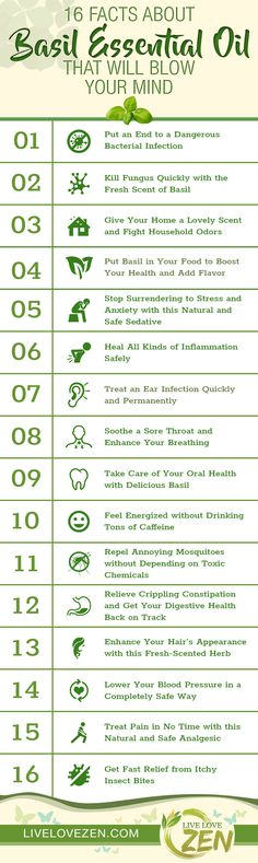 Basil Essential Oil Benefits Infographic