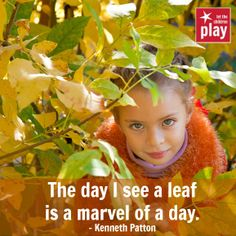 """The day I see a leaf is a marvel of a day.""  #playoutdoors"