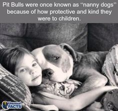 Little Girl & her Pit Bull Terrier Dog Cute Puppies, Cute Dogs, Dogs And Puppies, Doggies, Animals And Pets, Funny Animals, Cute Animals, Beautiful Dogs, Animals Beautiful