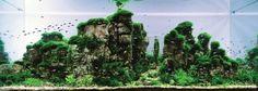 Dit zijn geen landschapsfoto's, dit zijn aquaria | EnDanDit