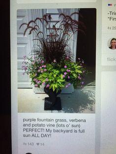 Planter I like