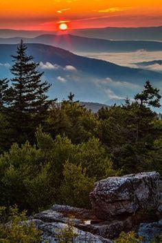 Summer Sunrise in Dolly Sods, West Virginia West Virginia, West Va, Virginia Occidental, Beautiful World, Beautiful Places, Monongahela National Forest, Wow Art, Beautiful Sunrise, Pics Art