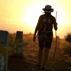 Caminante no hay camino, se hace camino al andar - #AntonioMachado #SienteGalicia #CaminoDeSantiago