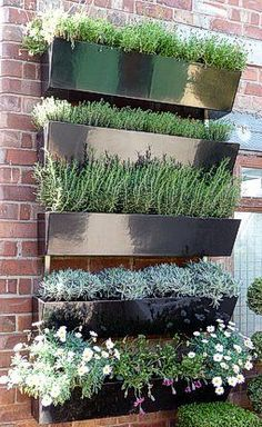 vertical garden wall: