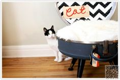 7. #Suitcase Bed - 12 Easy and Fun DIY Pet Projects ... → #Lifestyle #Insane