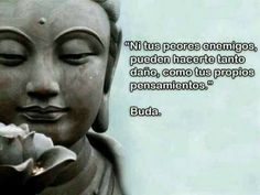 The Nicest Pictures: buda Buda Quotes, Me Quotes, Motivational Quotes, Inspirational Quotes, Funny Quotes, Buddhist Quotes, Living At Home, Dalai Lama, Osho