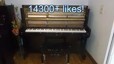 Ultrapassámos os 14300 likes na nossa página do Facebook! Já nos deu o seu like? https://www.facebook.com/SalaoMusicalLisboa