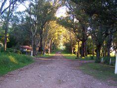 Camino. Villa La Merced, Córdoba, Argentina.