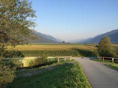 Gailtalontour Gailtalblog | Kärnten, summer morning in 2015, Rattendorf - Carinthia