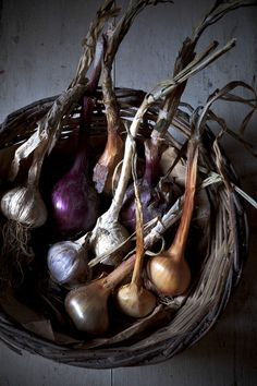 Freshly harvested onions and garlic by Zaira Zarotti
