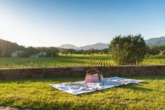 There is nothing quite like having a picnic while sipping delicious wine and enjoying the views of the Napa Valley. So grab a blanket, some friends