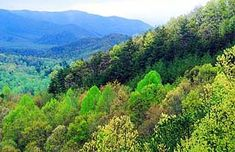 Spring view of Cosby, Tennessee and the Great Smoky Mountains National ...