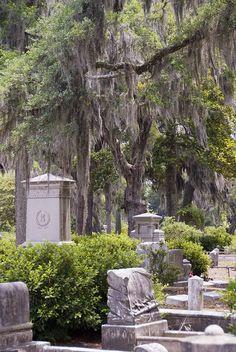 bonaventure cemetery savannah - Google Search Old Cemeteries, Graveyards, Georgia United, Georgia Usa, Savannah Georgia, Bonaventure Cemetery, Cemetery Art, Georgia On My Mind, Tybee Island