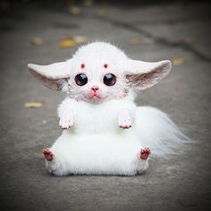A 23 Year Old Russian Makes Creepy Yet Adorable Fantasy Dolls Cute Creatures, Magical Creatures, Fantasy Creatures, Psycho Art, Minecraft Skins Animals, Santani Dolls, Animals And Pets, Cute Animals, Baby Animals