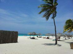 Eagle Beach in Noord Only minutes from Aruba Cunucu Residence ~  www.arubacunucuresidence.com #onehappyisland #IloveAruba #ArubaLovesMe #DiscoverAruba #Sun #Holiday #Vacation #Getaway #deals #lowrates #islandgetaway
