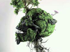 肉が朽ち、新たな命が芽吹く。コケを使って植物の生命力を表現した立体作品 | ARTIST DATABASE