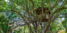 Spectacular tree house in Tuscan Dream - Santa Ana - Costa Rica http://lxcostarica.com/property/Tuscan-Dream